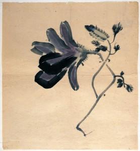Magnolia (Japan, 19th Century)