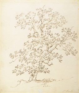 Thomas Barker of Bath (UK, 1769-1847) Oak